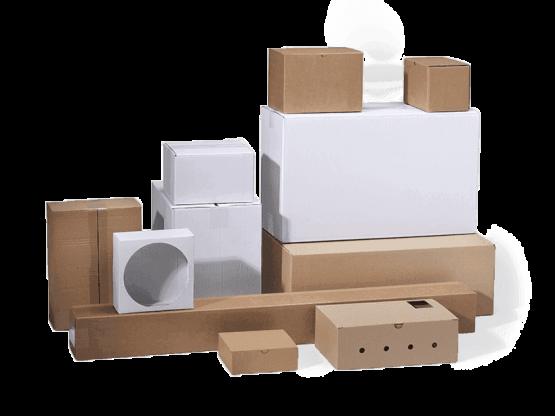 Webshopdozen - Holland Packaging